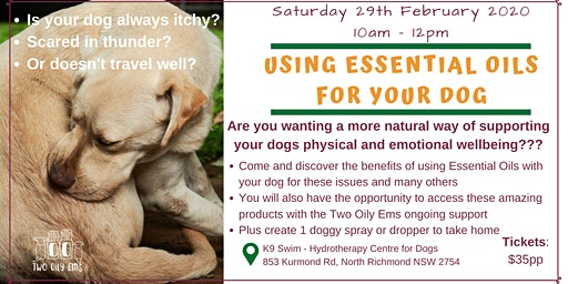 Using Essential Oils For Your Dog