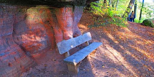 """So,08.03.20 Wanderdate """"Single Wandern Wasser, Wald und Wiesenpfad Calw mit Burg für 40-65J"""""""