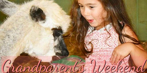 Grandparent's Weekend at Creekwater Alpaca Farm