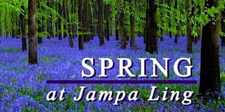 Spring Solstice Yoga Retreat tickets