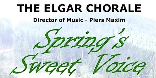 'Spring's Sweet Voice'