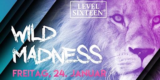 LEVEL SIXTEEN | Wild Madness
