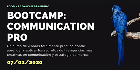 Bootcamp comunicación pro: entradas