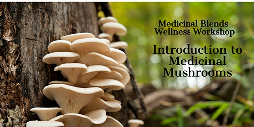 Introduction to Medicinal Mushrooms