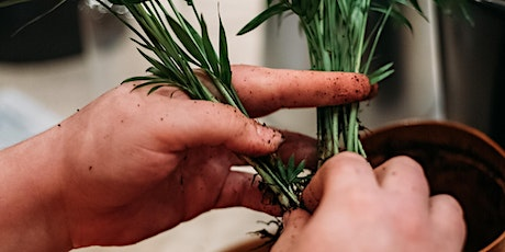 Timberland Workshops: 'Easy food growing for beginners in small spaces' tickets