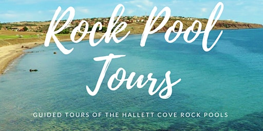 Adelaide Rock Pools - Guided Tour