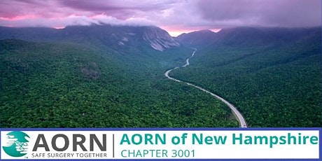 AORN Chapter 3001 Mixer Meet n' Greet tickets