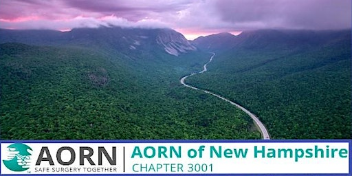 AORN Chapter 3001 Mixer Meet n' Greet