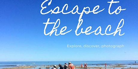 Aldinga Reef Rock Pools - Guided Tour tickets