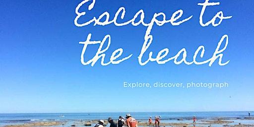 Aldinga Reef Rock Pools - Guided Tour