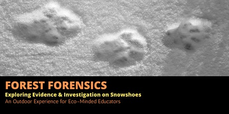 Forest Forensics: Exploring Evidence & Investigation on Snowshoes tickets