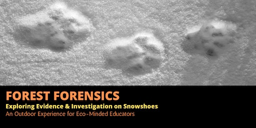 Forest Forensics: Exploring Evidence & Investigation on Snowshoes