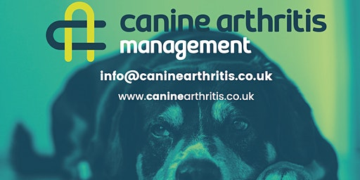Canine Arthritis Management Owner Workshop Hawkes Bay