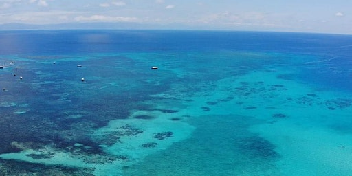 Modelling the atmospheric influence of coral reef-derived dimethyl sulfide