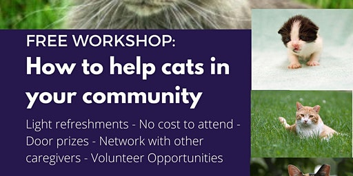 Free Workshop: How to Help Cats in your Community