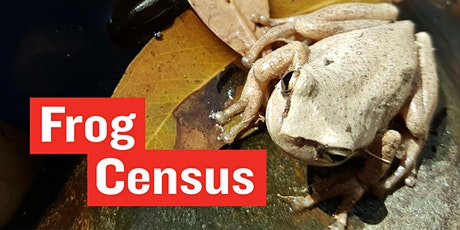 Frog Census  - Frog ID Week tickets