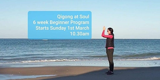 Qigong at Soul - 6 week Beginner Program