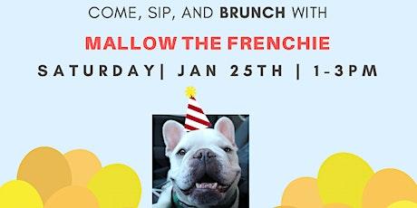 Wooftop Puppy Brunch! tickets