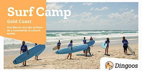 Dingoos Surf Camp - Stradbroke Island tickets