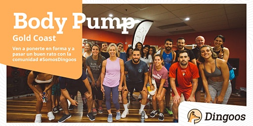 Dingoos Free Body Pump - Gold Coast