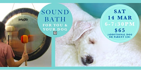Self-care sound bath for you & your dog! tickets
