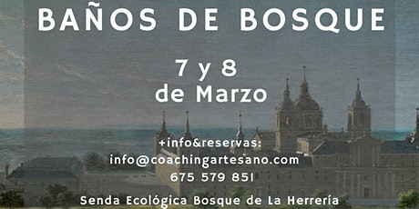 Baño de Bosque 7 Mar. - Bosques del Escorial entradas