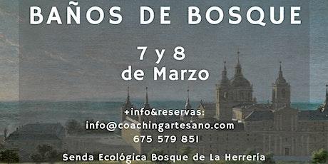 Baño de Bosque 7 Mar. - Bosques del Escorial entradas