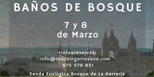 Baño de Bosque 7 Mar. - Bosques del Escorial
