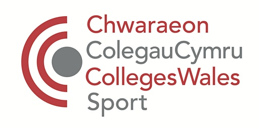 Bwrdd-crwn Chwaraeon a Lles / Sport and Wellbeing roundtable