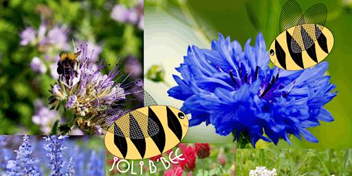 Bee Bomb Workshop