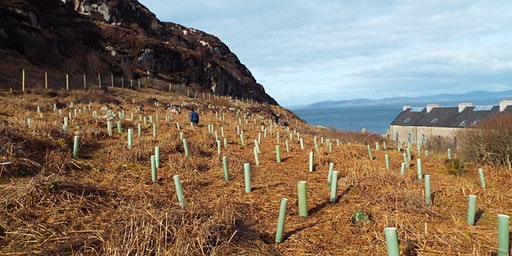 Making Woodland Work for You: Creation, management and funding on the west coast