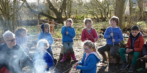 Abbotts Hall Farm Forest School Drop Off Day (Over 8's)