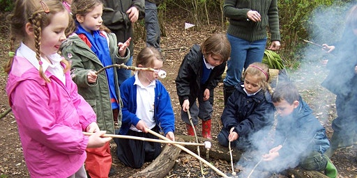 Abbotts Hall Farm Forest School Drop Off Day (Over 5's)