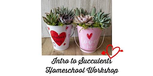 Intro to Succulents Homeschool Workshop - Valentine's edition