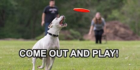 Morristown Dog Frisbee League, Family Friendly Fun  tickets