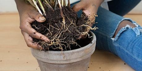 PLANT IT FORWARD! Free Plants! tickets