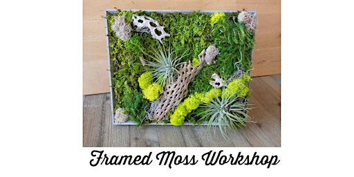 Framed Moss Workshop