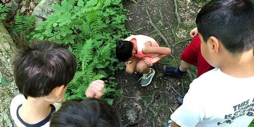 Week 2 Summer Camp: Animal Tracking