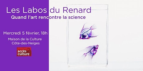 Quand l'art rencontre la science - Les Labos du Renard billets