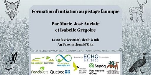 Formation d'initiation au pistage faunique