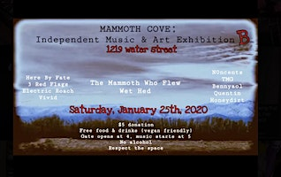 Mammoth Cove's Independent Art & Music Exhibition