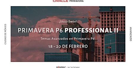 Primavera P6 Professional II entradas