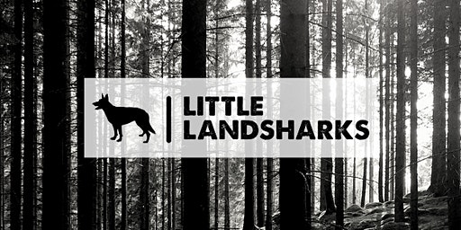 Little Landsharks Woodland Walks - Blaen Bran