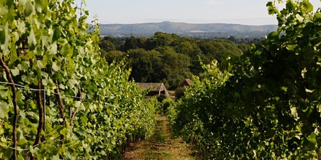 English Wine Masterclass and Tasting with Bolney Estate tickets