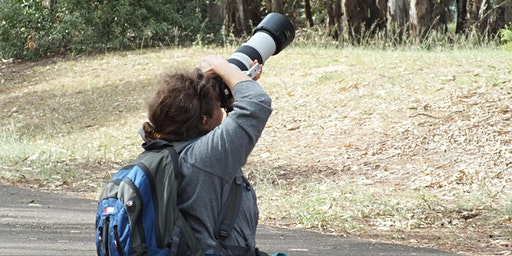 FREE Guided Walk and Photography Workshop