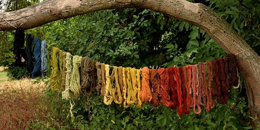 Natural dyeing workshop in Medieval style