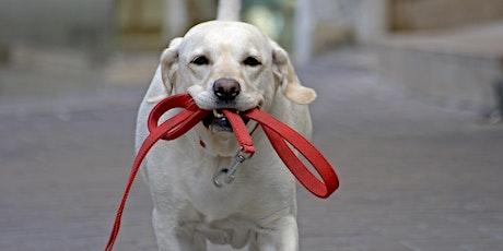 HSNB Dog Walker Orientation & Training - February 21, 2020 tickets