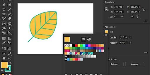 Adobe Illustrator Basics for Beginners
