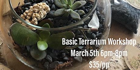Basic Terrarium Workshop tickets