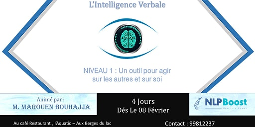 L'Intelligence verbale - Communiquer ,influencer & faire agir
